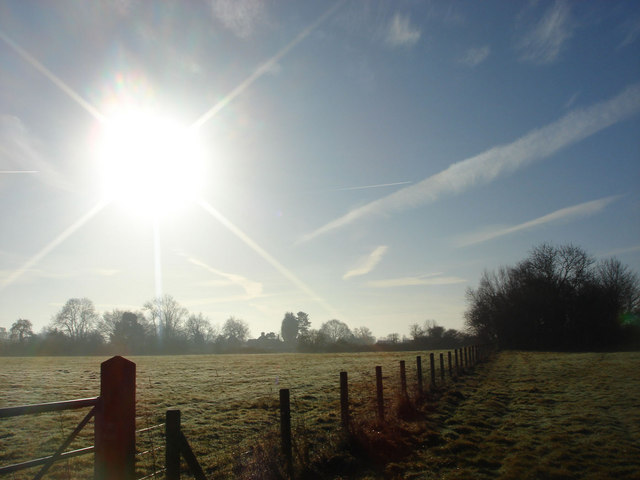 winter sun over a field