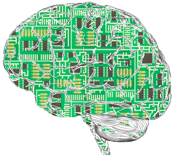 a brain full of computer circuit boards