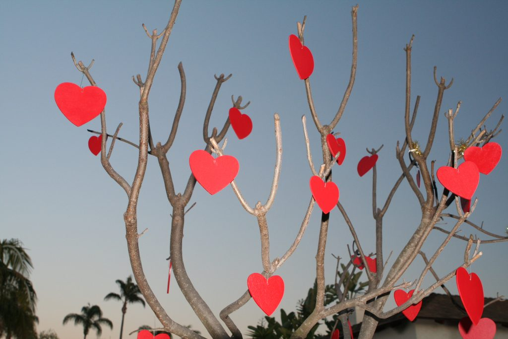 hearts on a bare tree