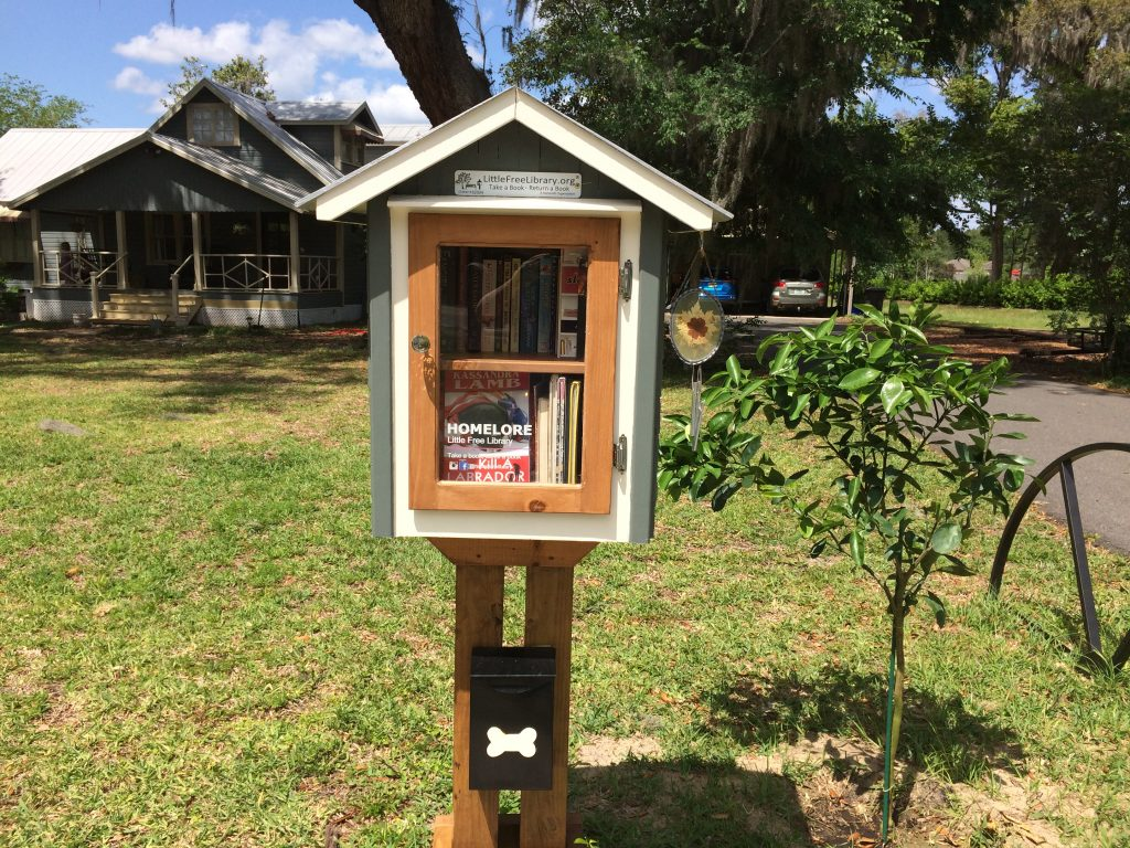 a little free library in my neighborhood
