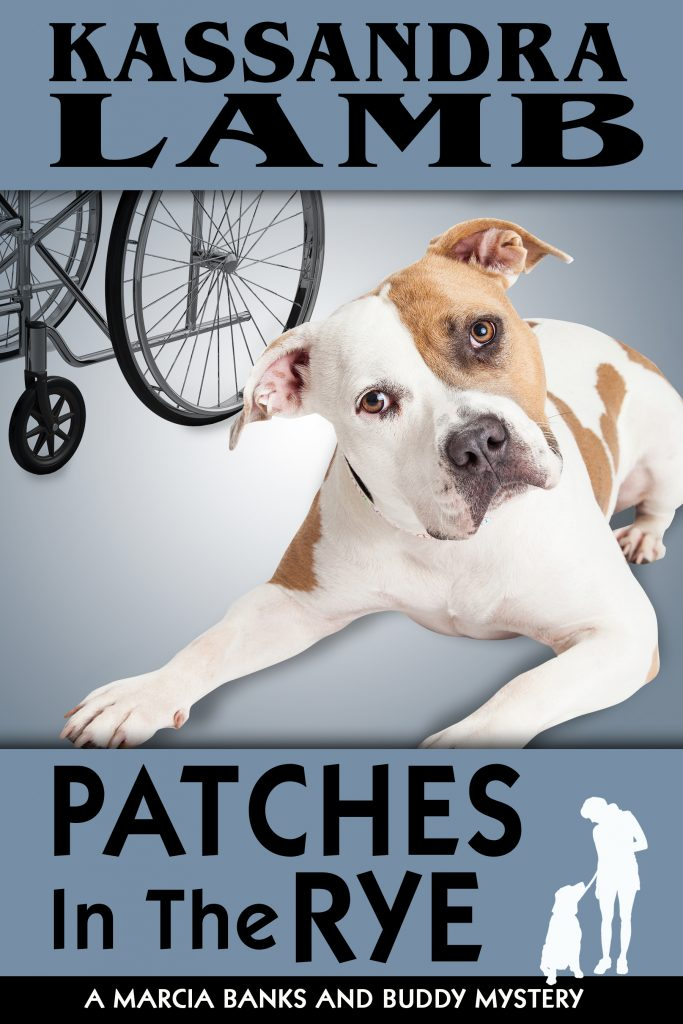 Patches in the Rye cover