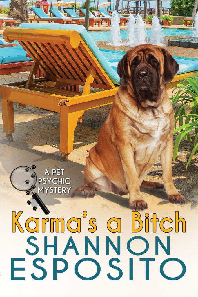 Karma's a Bitch book cover
