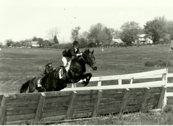 horse racing is in my blood