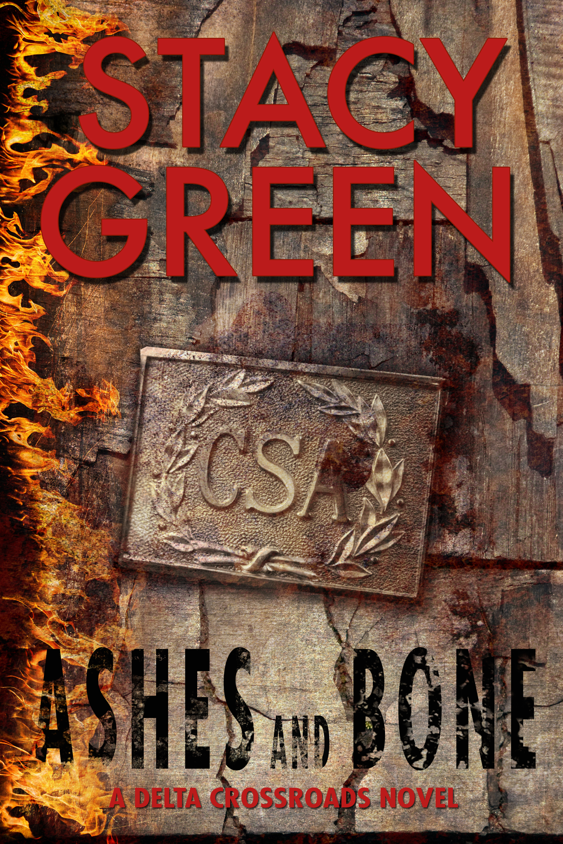 cover of Ashes and Bone