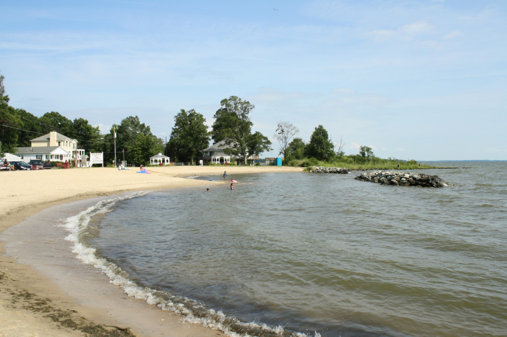 the local beach